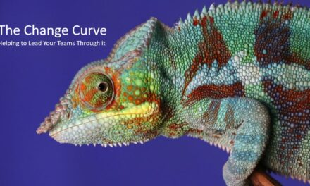 The Change Curve: How to Use it Effectively to Step up Change