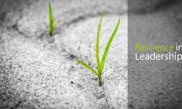 Resilience in Leadership: Why & How to Improve your Bounce-Back Ability