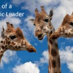 Definition Of A Democratic Leader – The Science, the Pros and the Cons